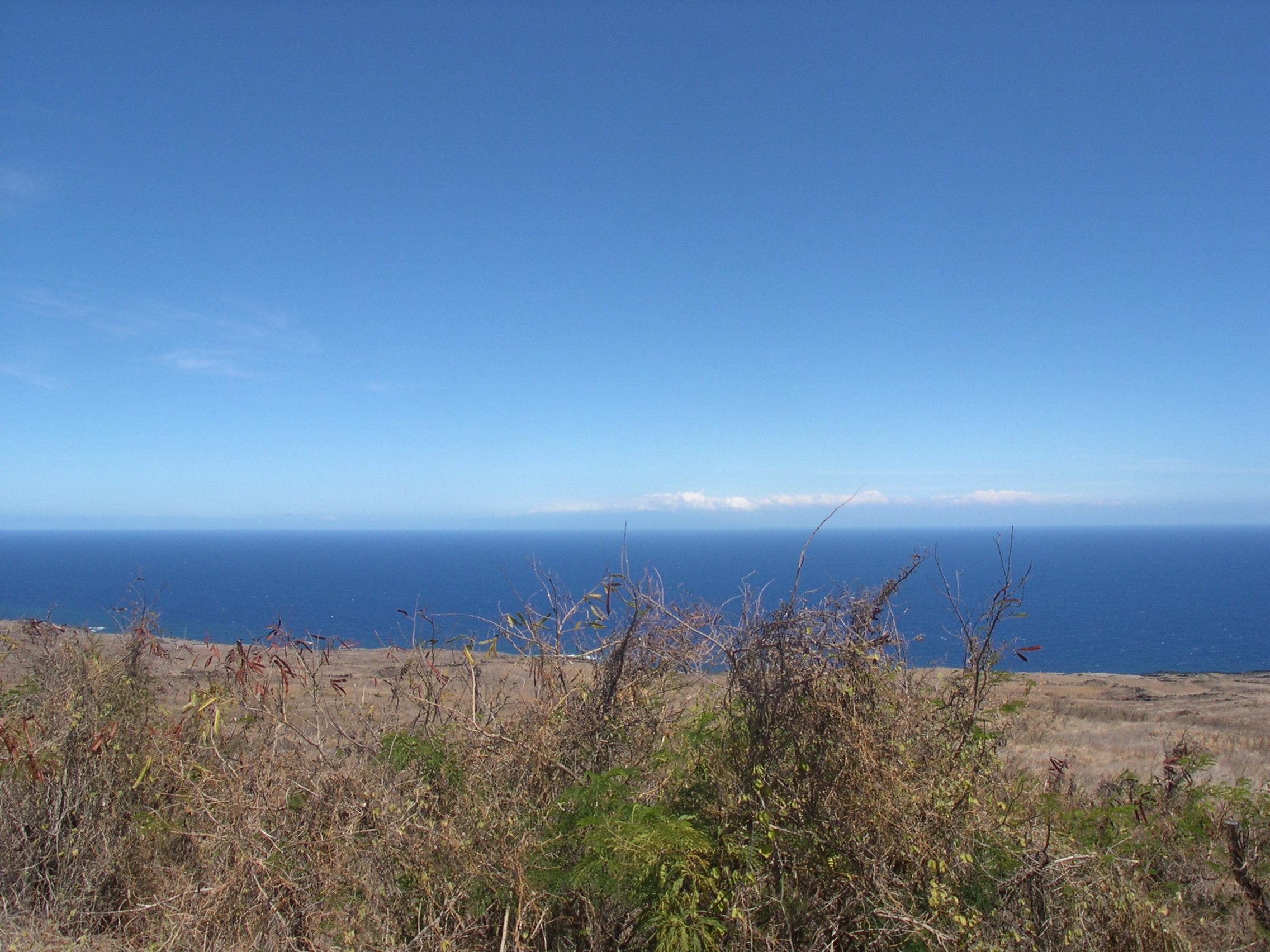 hawaii6 042
